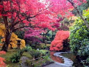 ブッチャートガーデン日本庭園2013年10月
